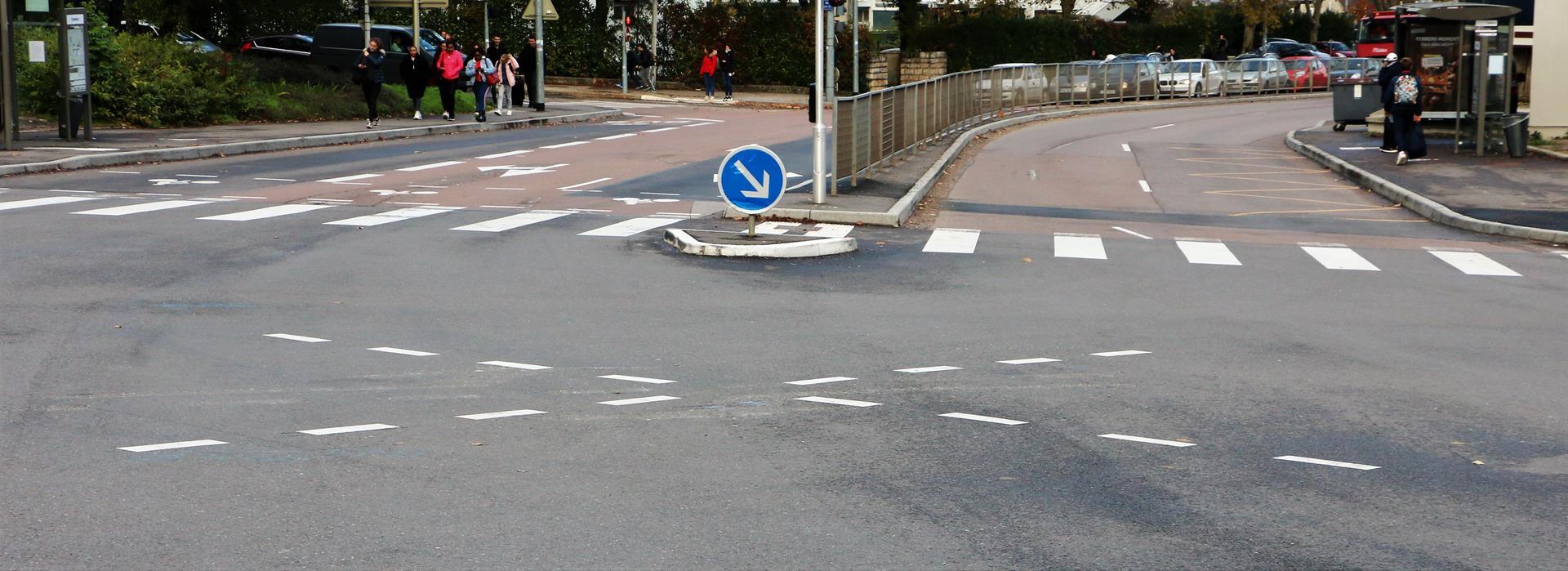 carrefour Pompon Allobroges (1)