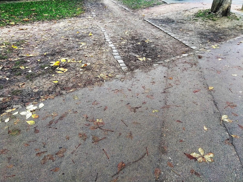 Allée piétonne arret Divia Corol Chevreul Parc (4)