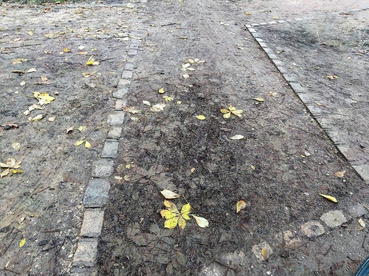 Allée piétonne arret Divia Corol Chevreul Parc (2)